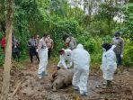 bangkai-gajah-betina-yang-ditemukan-mati-di-desa-sri-mulya-kecamatan-peunaron-aceh-timur.jpg