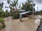 Dampak Banjir di Padang Tiji, 67 Hektare Tanaman Padi Petani Tertimbun Kayu thumbnail