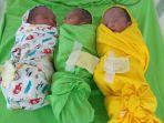 bayi-kembar-tiga-4.jpg
