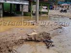 bencana-lagi-di-aceh-tenggara-rumah-dan-areal-pertanian-terendam-air-bercampur-bebatuan.jpg
