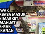 biawak-raksasa-panjang-hampir-2-meter-masuk-minimarket-di-thailand-memanjat-rak-rak-makanan.jpg