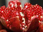 buah-delima.jpg