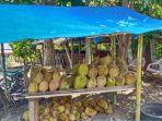 buah-durian-0308.jpg