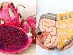 buah-naga-untuk-meningkatkan-kesehatan-usus.jpg