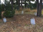 cari-harta-karun-di-kuburan.jpg