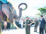 gajah-mengalungkan-karangan-bungan_20171216_154819.jpg