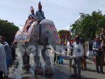 gajah-putih-linge_20180806_133047.jpg