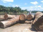 gelondongan-kayu-berserakan-di-sungai-sulampi_20170609_092737.jpg