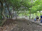 hutan-kota-2.jpg