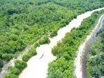 hutan-mangrove-kampung-rantaupakam-bendahara-aceh-tamiang.jpg