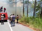 hutan-pinus-terbakar-0308.jpg
