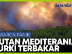hutan-terbakar-hebat-warga-mediterania-turki-panik.jpg