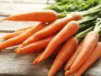 ilustrasi-wortel-sumber-vitamin-a.jpg