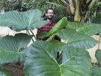 insiyur-pesawat-jadi-petani-di-india.jpg