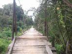 jembatan-gantung-di-aceh-timur-2020.jpg