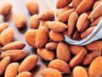 kacang-almond.jpg