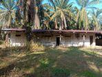 kampung-perkebunan-alurjambu-di-kecamatan-bandarpusaka-aceh-tamiang-he.jpg