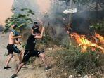kebakaran-hutan-di-aljazair.jpg