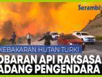 kobaran-api-raksasa-hadang-pengguna-jalan-di-turki-dua-mobil-ditinggal-pemilik.jpg