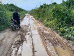 kondisi-ruas-jalan-penghubung-desa-di-daerah-pedalaman-kecamatan-pante-bidari-aceh-timur.jpg
