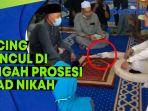 kucing-muncul-di-tengah-prosesi-akad-nikah-terjadi-di-malaysia-begini-cerita-pengantin.jpg