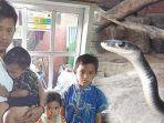 nasib-4-anak-hidup-yatim-piatu-setelah-ayah-meninggal-karena-sakit-ibu-tewas-diduga-digigit-ular.jpg