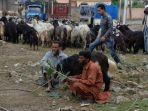 para-pedagang-hewan-kurban-menunggu-calon-pembeli-di-srinagar-pada-11-agustus-2019.jpg