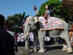 pawai-budaya-gajah_20180807_085357.jpg