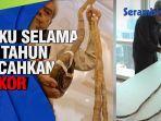 VIDEO - Pelihara Kuku Selama 66 Tahun Pecahkan Rekor Sepanjang 900 Cm, Kakek Ingin Sumbang ke Museum thumbnail