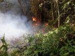 pembakaran-lahan-kawasan-hutan-lindung-desa-sekhakut-leuser-aceh-tenggara.jpg