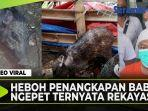 penangkapan-babi-ngepet.jpg