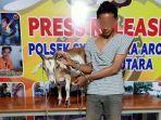 pencuri-kambing-ditangkap-di-aceh-utara-kamis-6-mei-2021.jpg