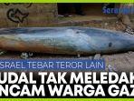 penemuan-rudal-israel-yang-gagal-meledak-ancaman-bagi-penduduk-gaza.jpg