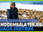 penggembala-di-cuaca-ekstrim-perjuangan-15-hari-pulang-ke-turki.jpg