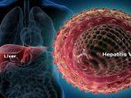 penyakit-hepatitis-a.jpg