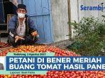 petani-di-bener-meriah-buang-tomat-hasil-panen-harga-anjlok-akibat-pandemi-covid-19.jpg