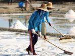 petani-garam-sedang-mengurai-serta-mengeringkan-garam.jpg