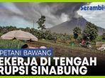 petani-tetap-bekerja-di-tengah-erupsi-gunung-sinabung.jpg