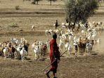 peternak-di-somalia.jpg