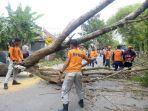 petugas-trc-bpbd-langsa-membersihkan-batang-pohon-besa-di-jalan_20171130_180555.jpg