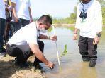 pln-tanam-mangrove-di-lancok-0802.jpg