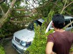 pohon-tumbang-menimpa-mobil-di-aceh-jaya_20180726_140707.jpg