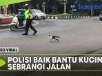polisi-baik-bantu-kucing-sebrangi-jalan.jpg