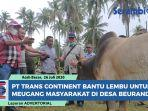 pt-trans-continent-salurkan-bantuan-lembu-untuk-meugang-masyarakat-di-desas-beurandeh.jpg