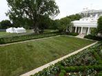 rose-garden-di-gedung-putih-amerika-serikat.jpg