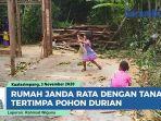 rumah-janda-tiga-anak-rata-dengan-tanah-tertimpa-pohon-durian.jpg