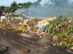 sampah-di-bireuen-2020.jpg