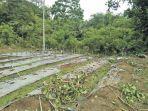 satu-area-tanaman-cabai-petani-gampong-cot-tunong-kecamatan.jpg