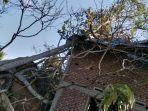 satu-unit-rumah-di-desa-bugak-mesjid-jangka-rusak-berat-setelah-satu-pohon-tumbang.jpg