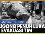 seekor-dugong-terdampar-dengan-tubuh-dipenuhi-luka-berhasil-dievakuasi.jpg